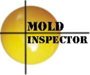 Florida Mold Related Services
